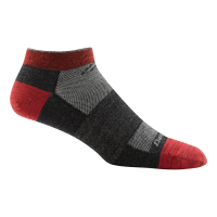 Darn Tough Endurance No Show Light Sock - Men's