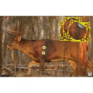 Birchwood Casey Eze-Scorer Whitetail Target