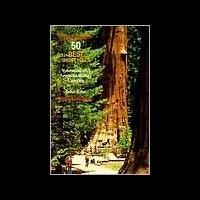 50 Best Short Hikes Ut N Parks, John Krist, Publisher - Wilderness Press