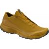 Arc'teryx Aerios FL GTX Hiking Shoes - Mens, Yukon/Orion, 9