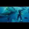 GoPro Super Suit (Aoeber Protection + Dive Housing for HERO5 Black)