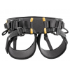 Petzl Falcon Ascent Lightweight Rescue Harness for Fope Ascents, 1
