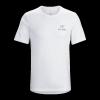 Arc'Teryx Emblem Men's Short Sleeve T-Shirt, White, Large