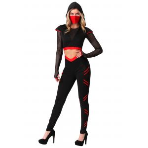 Women's Alluring Assassin Costume