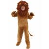 Child Deluxe Lion Costume bundle w/ Makeup Kit