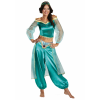 Women's Aladdin Animated Jasmine Prestige Costume