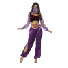 Purple Belly Dancer Costume for Women