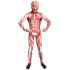 Kids Muscle Morphsuit Costume