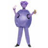 Kids Willy Wonka Violet Beauregarde Costume