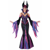 Dark Sorceress Women's Costume
