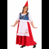 Women's Garden Gnome Plus Size Costume