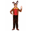 Child's Tea Time March Hare Costume