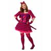 Plus Size Sexy Wonderland Cat Costume