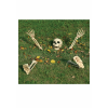 5 Piece Buried Alive Skeleton Kit