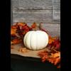 Cream Pumpkin 6''x9''