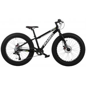 Image of Framed Mini-Sota Fat Bike