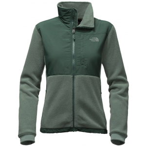 The North Face Denali 2 Fleece