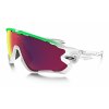 Oakley Jawbreaker Olympic Collection Sunglasses
