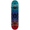 Darkstar Convolute Skateboard Complete