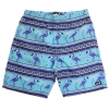 Neff Miami Hot Tub Boardshorts Blue