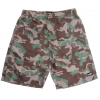 Neff Razer Hot Tub Boardshorts Camo