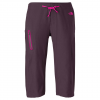 The North Face Echo Lake Apex Long Shorts