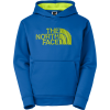 The North Face Nfp Surgent Logo Hoodie