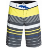 Quiksilver Yg Stripe 21in Boardshorts