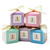 Chic Pearlescent Wedding Favor Box