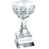 Crystal Top Performance World Trophy Cup