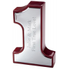 First Place Trophy Award Winner
