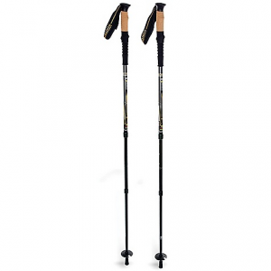photo: Mountainsmith Carbonlite Pro antishock trekking pole
