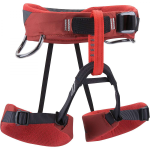 photo: Black Diamond Wiz Kid sit harness