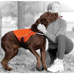 Image of Kurgo Reflect & Protect Active Dog Vest