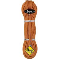 Beal Wall Master 10.5 mm Rope