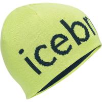 Icebreaker Beanie
