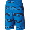 Columbia Boys' Sandy Shores Boardshort - Large - Super Blue Camo Stripes