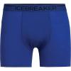 Icebreaker Men's Anatomica Boxers - XL - Surf