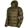 Mammut Men's Meron IN Hooded Jacket - Medium - Iguana / Boa