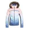 Roxy Women's Snowstorm Jacket - Large - Powder Blue Gradient Print