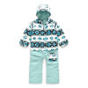 The North Face Toddlers' Insulated Jumpsuit - 6T - TNF White Tribal Geo Print