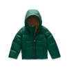 The North Face Toddlers' Moondoggy Down Jacket - 4T - Night Green