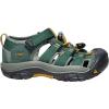 Keen Kids' Newport H2 Shoe - 8 - Green Gables / Wood Thrush