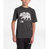 The North Face Boys' Tri-Blend SS Tee - Large - TNF Dark Grey Heather