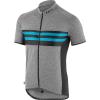 Louis Garneau Men's Classic Jersey - Medium - Blue Stripes