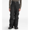 The North Face Boys' Freedom Insulated Pant
