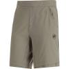 Mammut Men's Crashiano Shorts - 32 - Tin