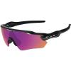 Oakley Radar EVZero Path Sunglasses - One Size - Polished Black / PRIZM Trail