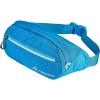 Gregory Nano Mini Waistpack
