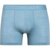 Icebreaker Men's Anatomica Cool-Lite Boxer - XL - Waterfall